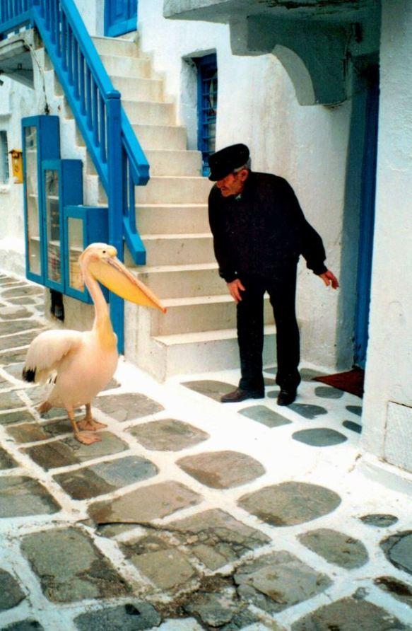 Grèce, 1996
